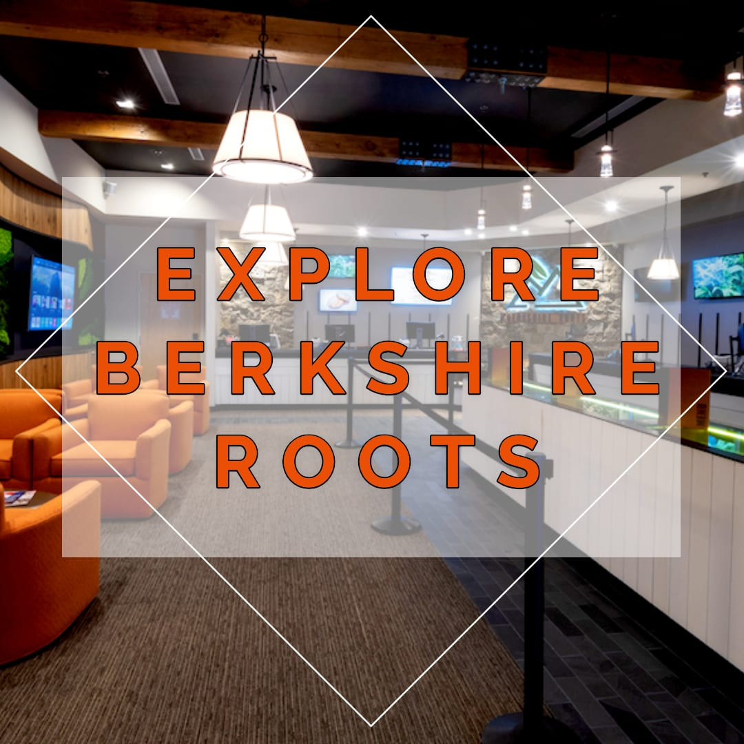 Berkshire Roots | Medical & Adult-Use Cannabis | Pittsfield, MA